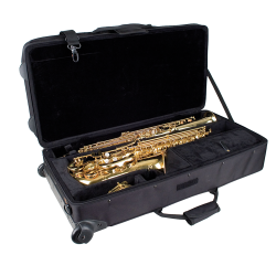 Proteus alt/sopraan koffer PB 304