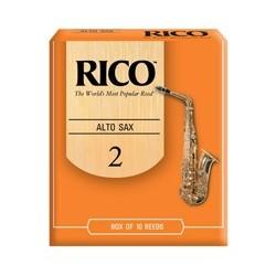 Rico Oranje Alt