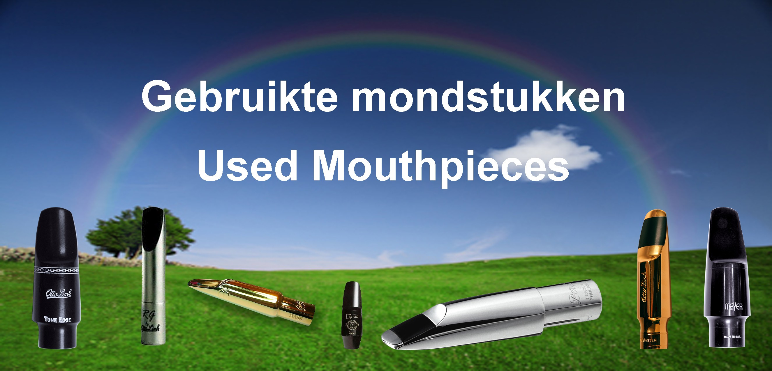Used Mouthpieces